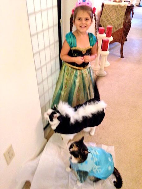 sc 1 st  Merovence Sandy Stahlman & Merovence: Family Pet ((Halloween)) Fashion Show!